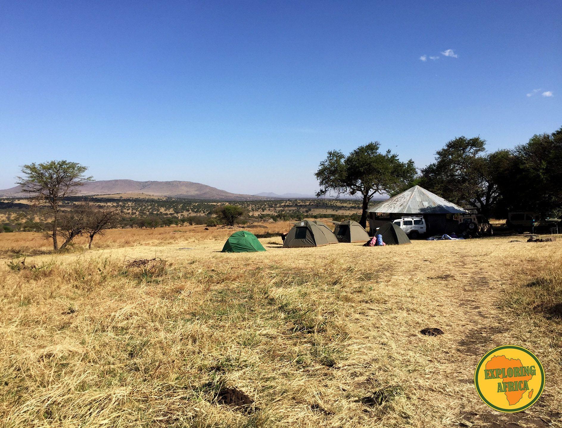 camping_serengeti lobo_tanzania