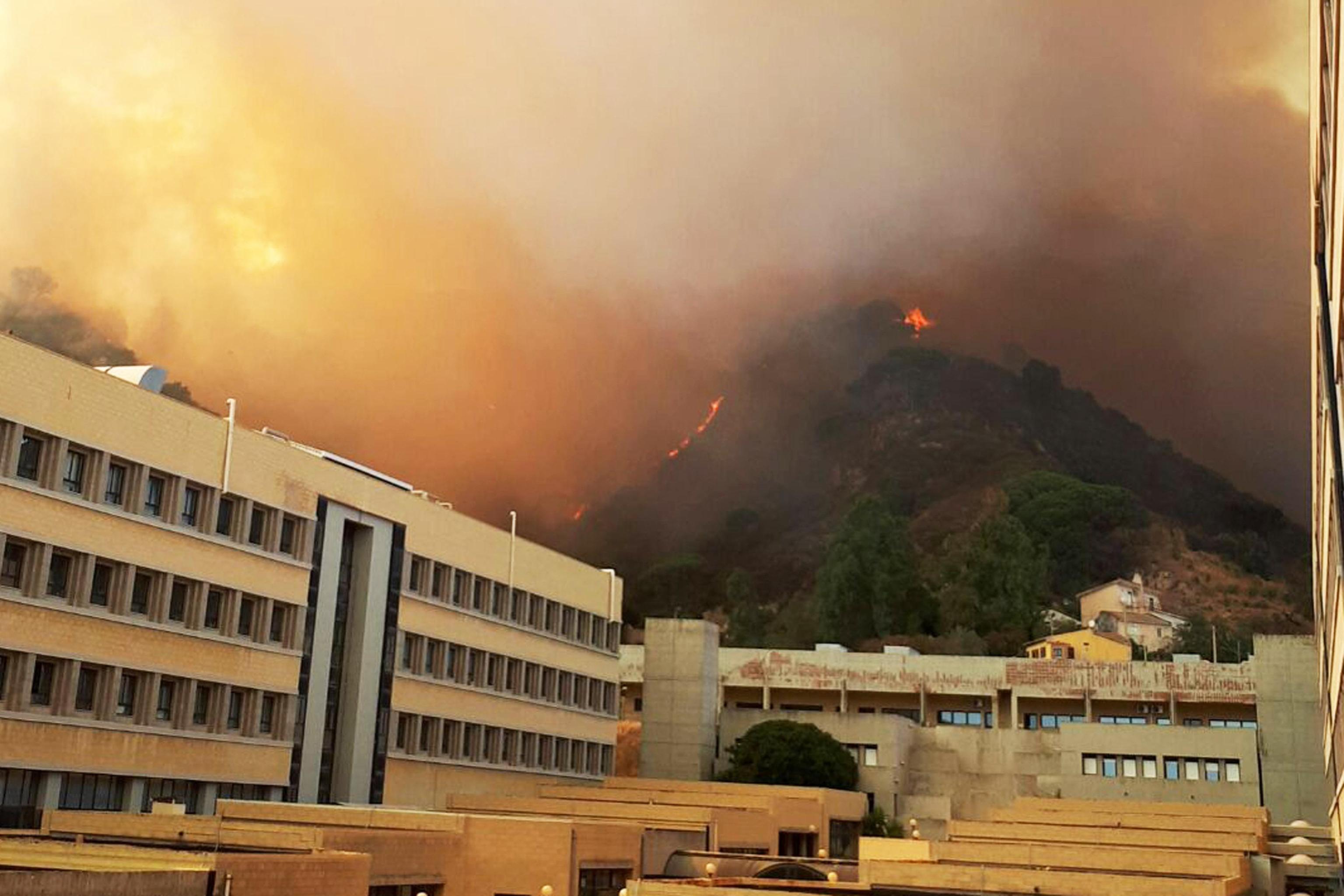 Incendi:Messina;situazione verso normalità,si contano danni