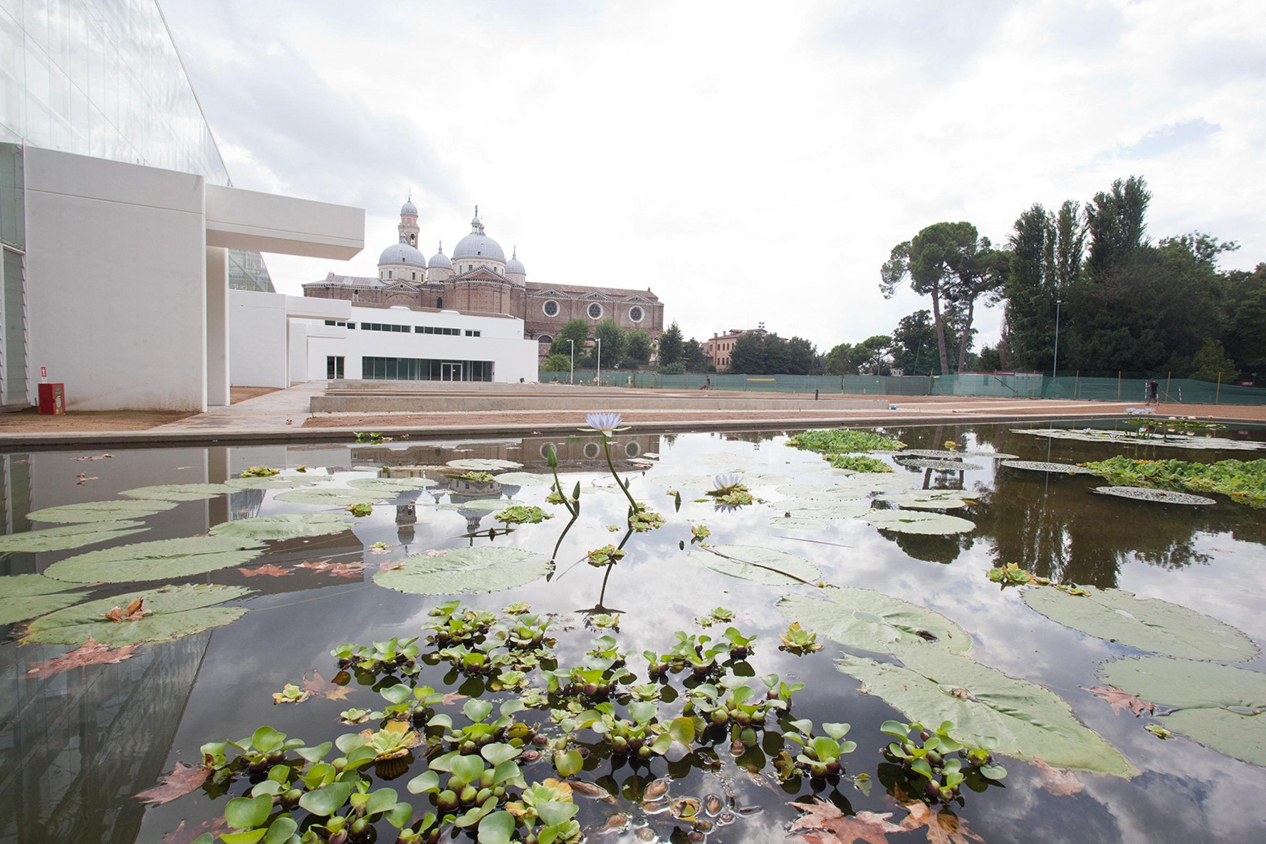 Il giardino delle biodiversità a Padova