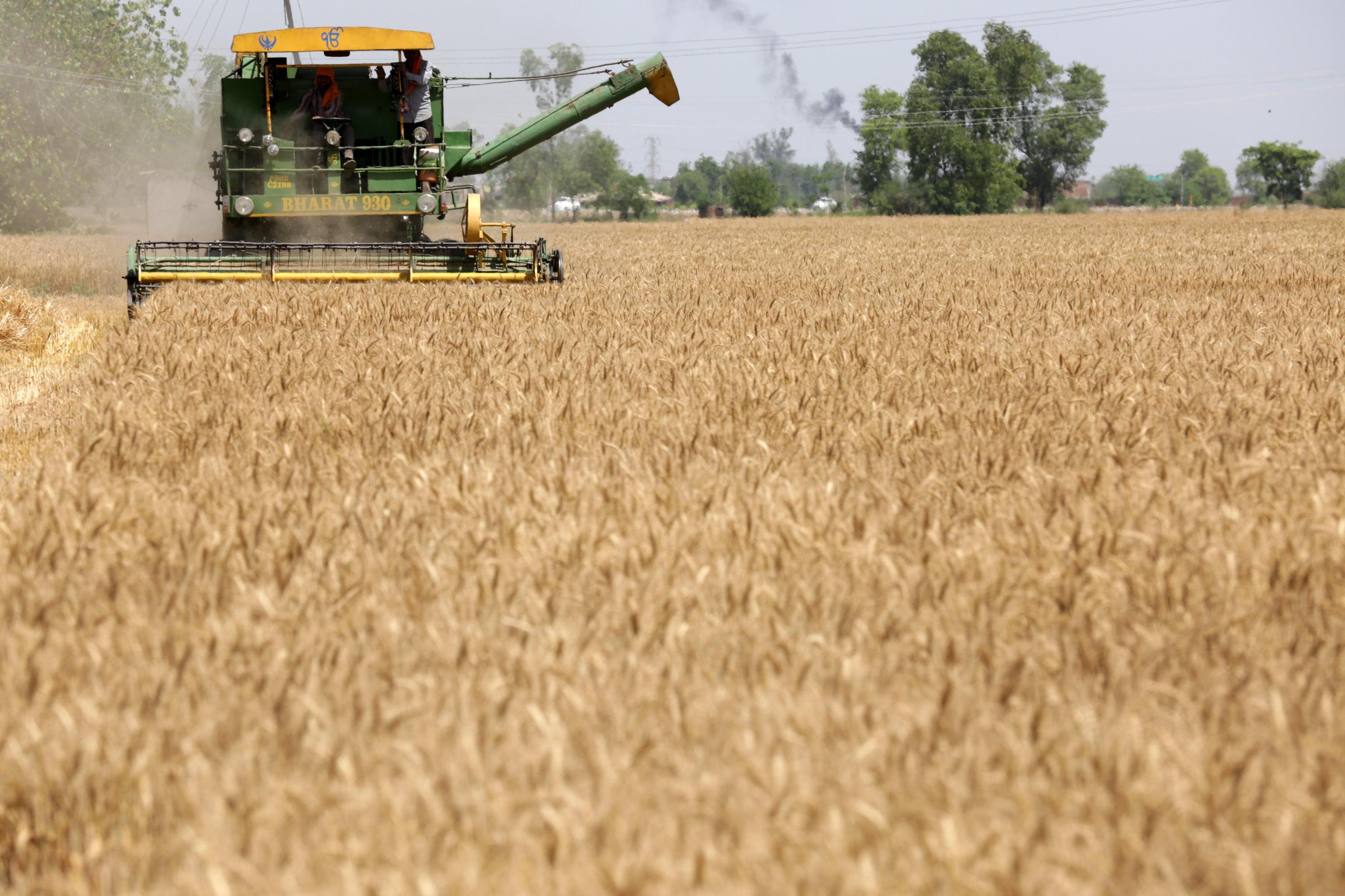 Pensioni agricole: agricoltori italiani a convegno il 7 luglio con Cesare Damiano