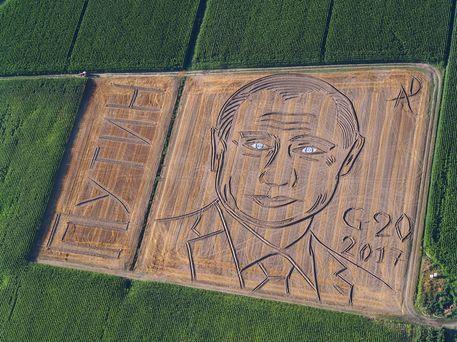 Ritratto di Putin con aratro e trattore: l'opera dell'artista Dario Gambarin