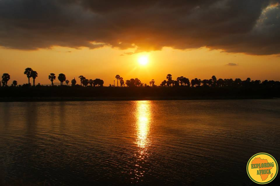 tramonto savana