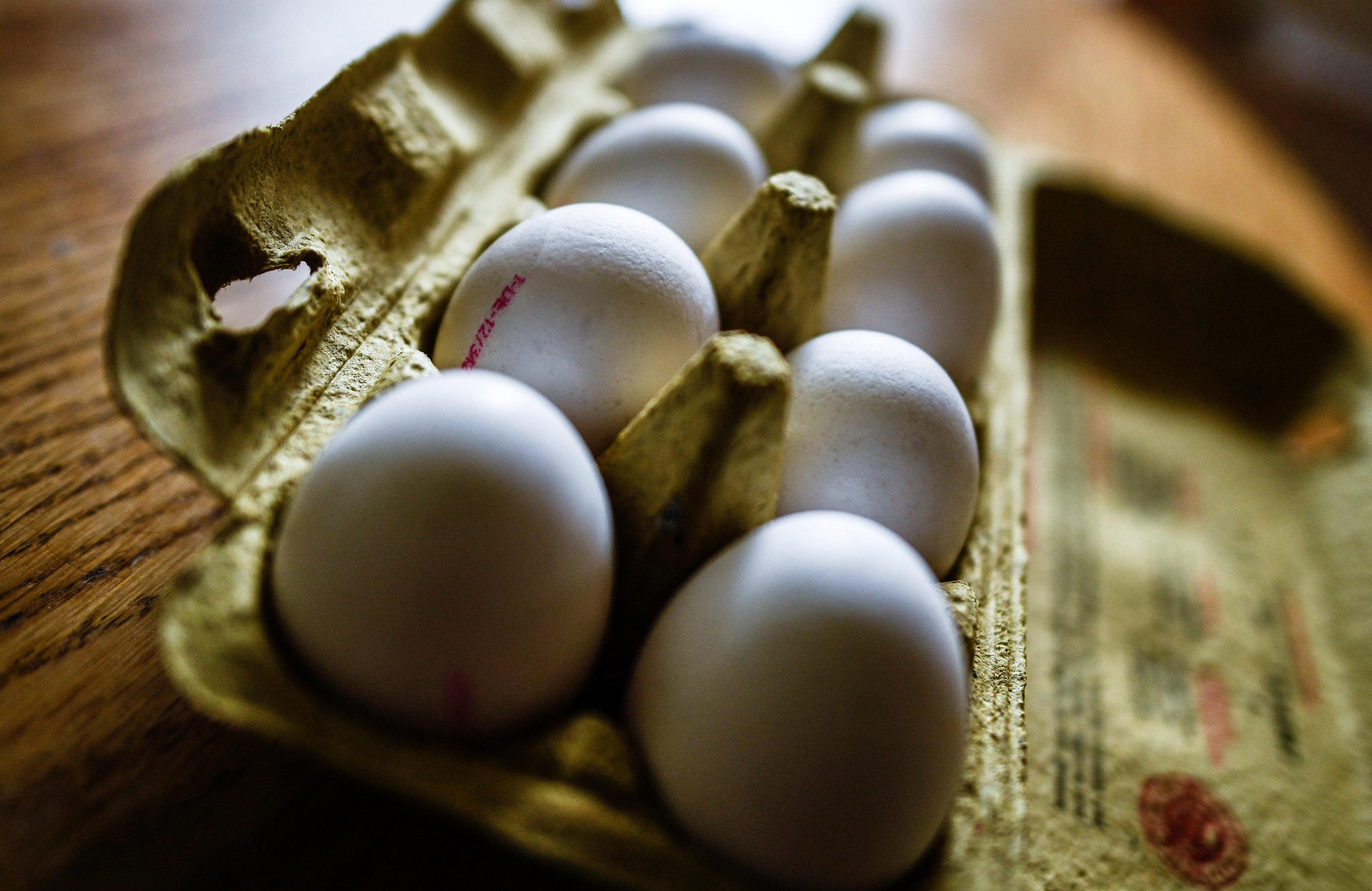 Fipronil nelle uova: sintomi e i rischi per la salute umana