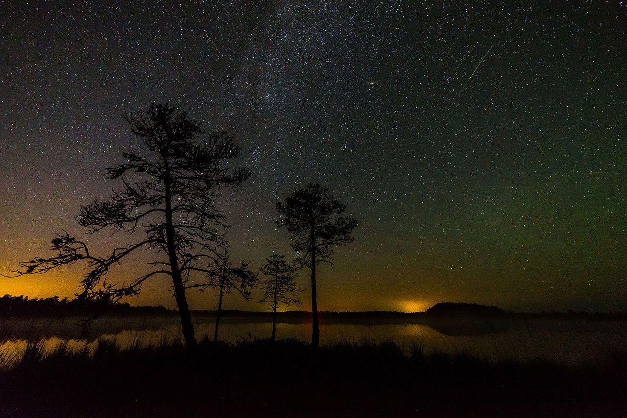 Notte di San Lorenzo Perseidi: dove ammirare il 10 agosto le stelle cadenti