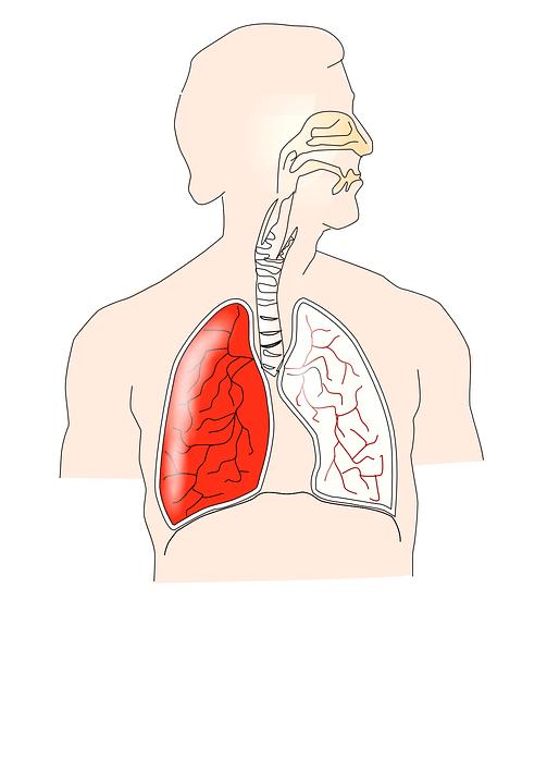 Settimana mondiale della fibrosi polmonare idiopatica, eventi in programma dal 17 al 24 settembre