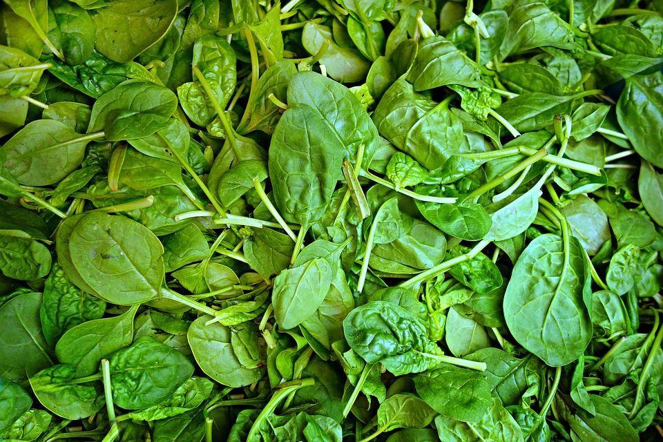 Spinaci Ortoverde, ritirati alcuni lotti: «Probabile presenza erba velenosa»