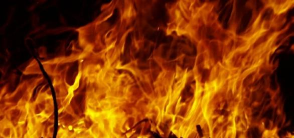 Val Susa e incendi: otto vigili del fuoco intossicati