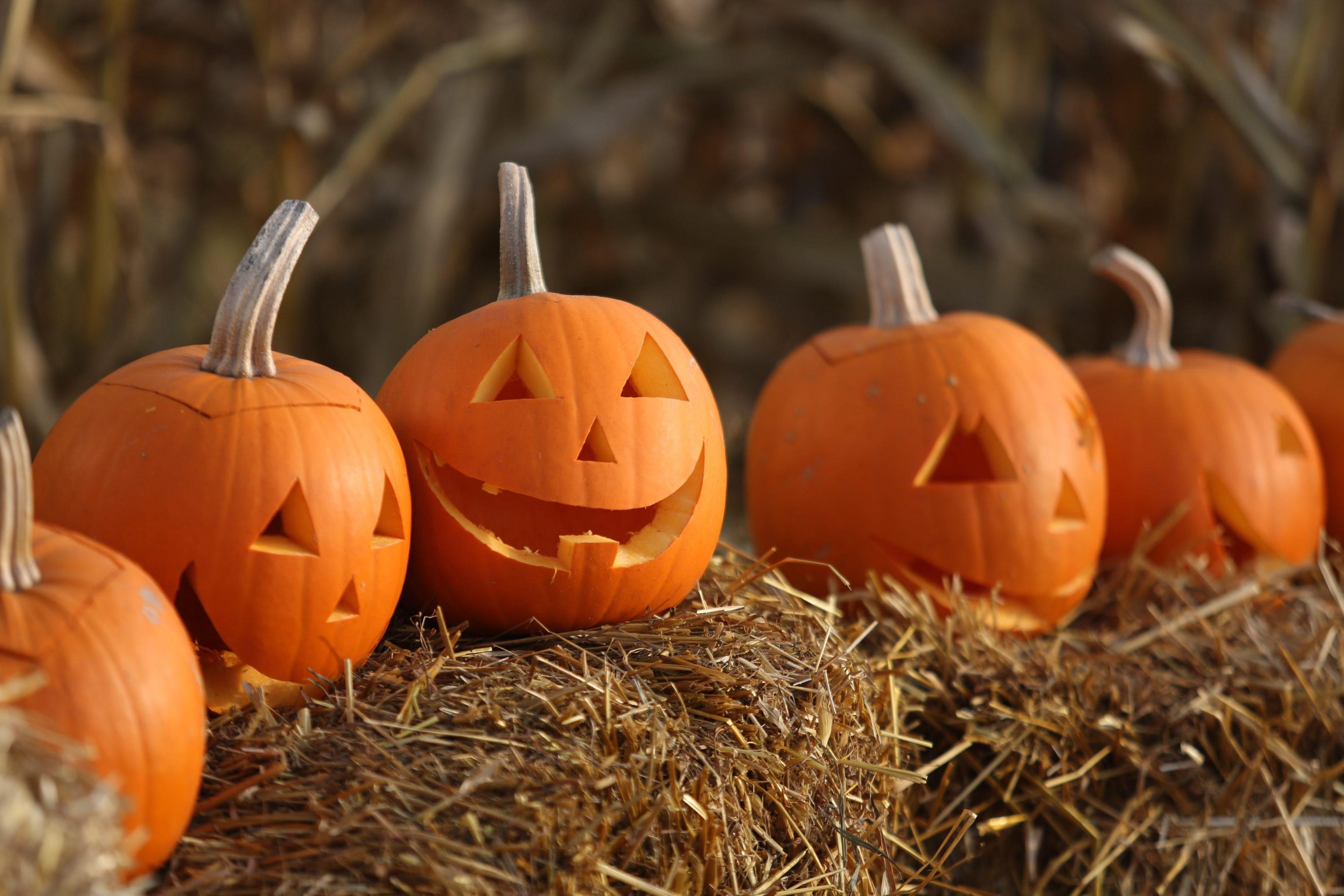 Quanto conosci Halloween? [QUIZ]