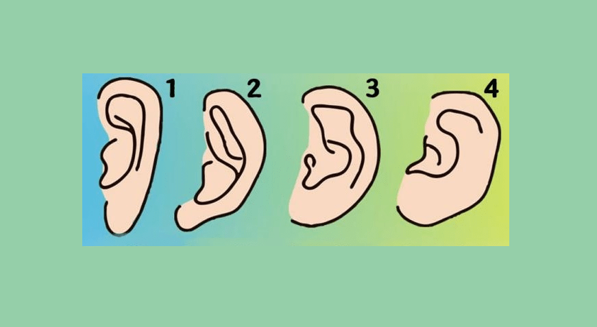 forma orecchie personalita