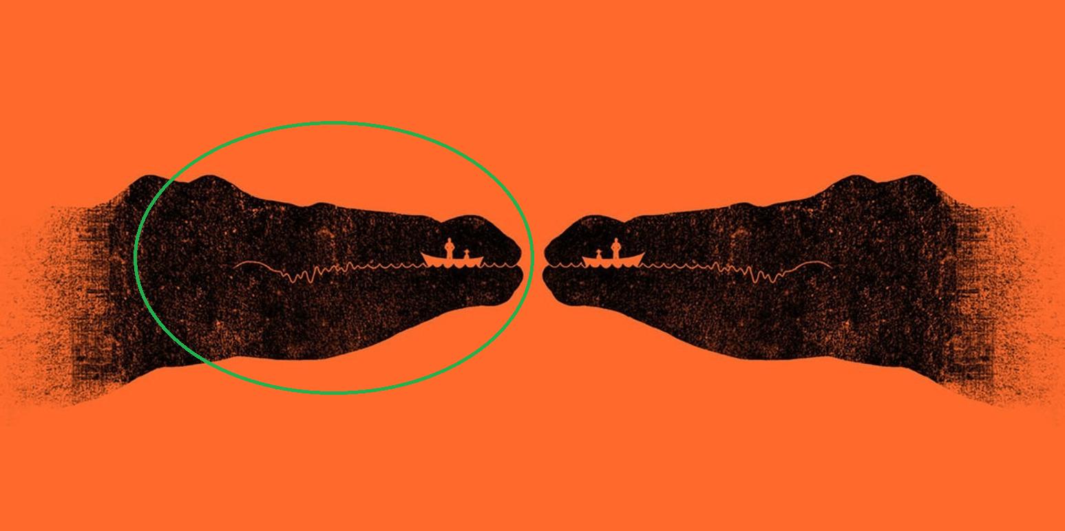 illusione ottica coccodrillo barca 1