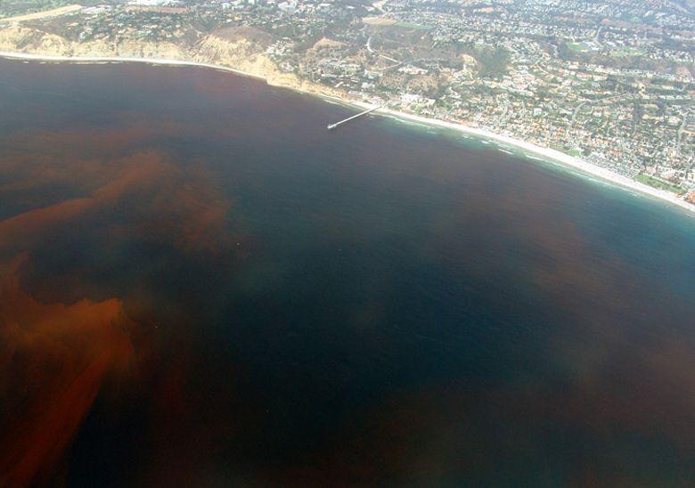 marea rossa