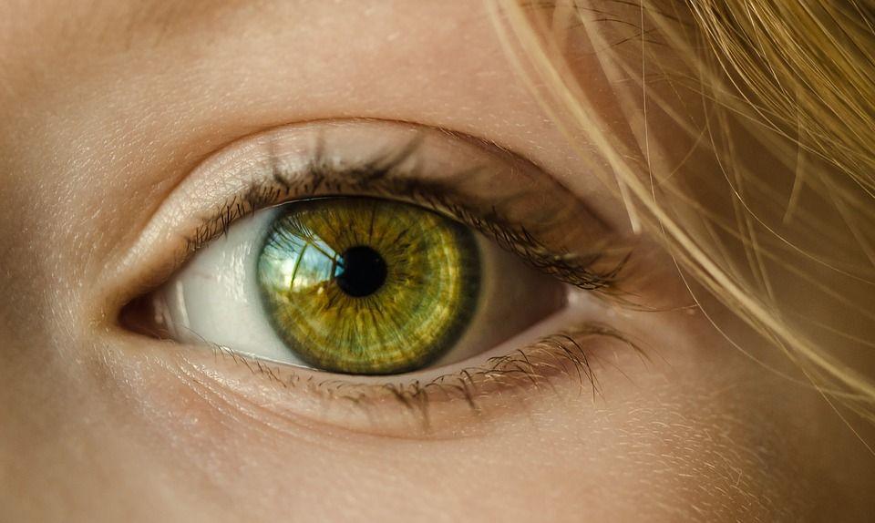Cecità: con le cellule staminali si ricrea la cornea