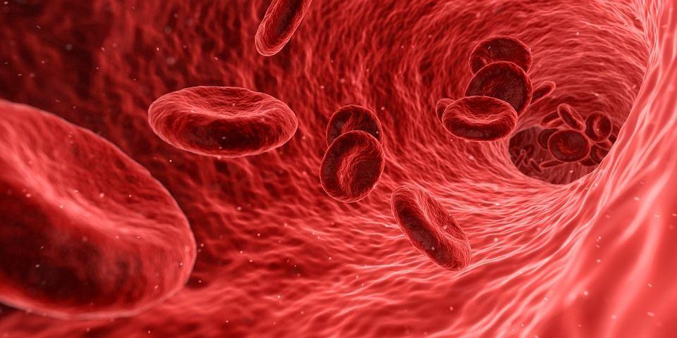 Leucemia acuta: novità e progressi delle terapie