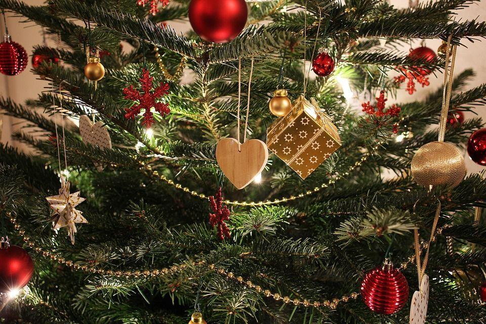 Ecco perché hai sempre fatto l'albero di Natale in modo sbagliato