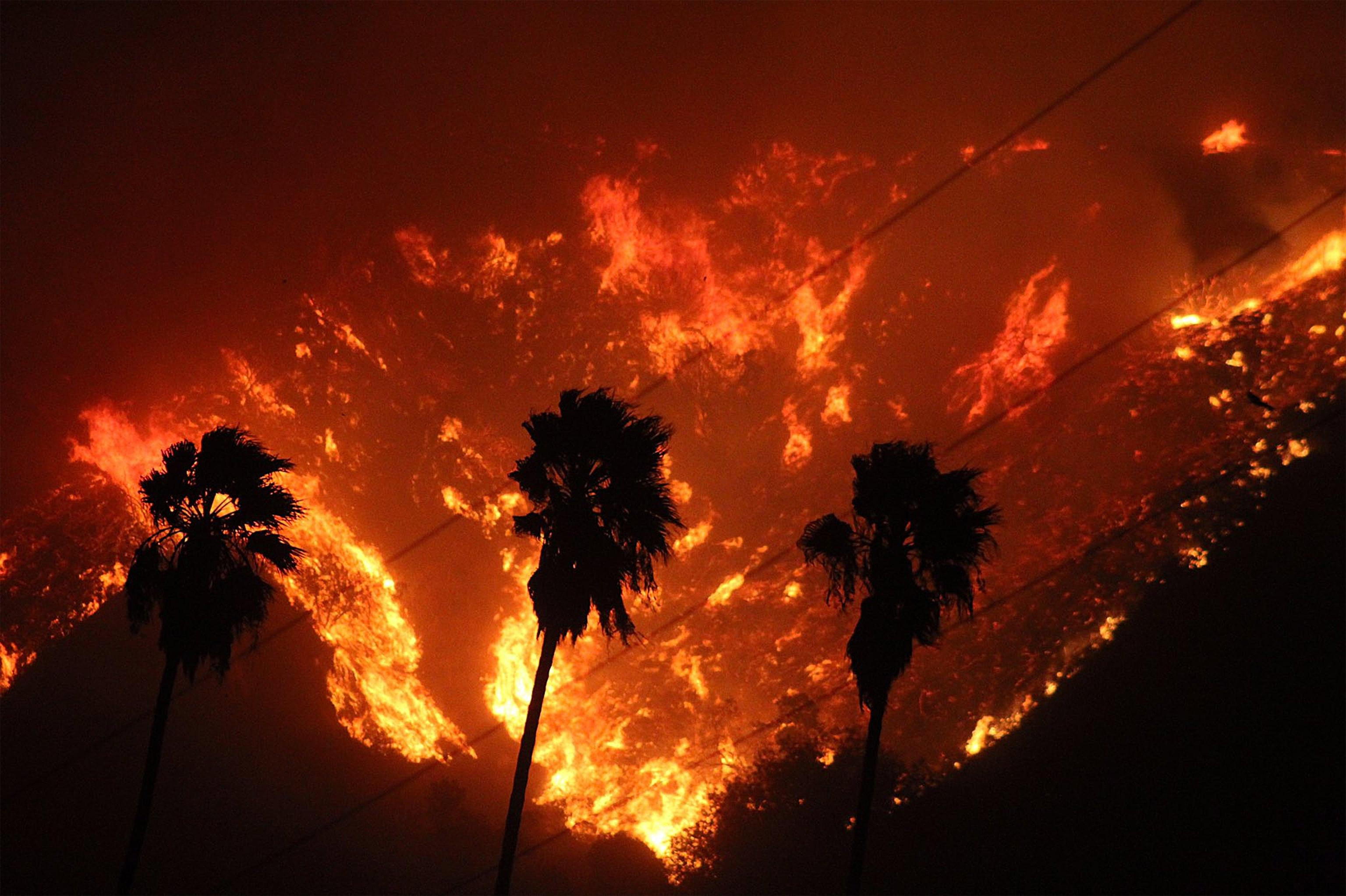 Incendio in California: fiamme fino a Los Angeles, evacuato il quartiere delle star