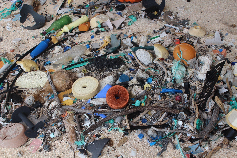 Bioplastiche biodegradabili in mare, un'arma in più contro l'inquinamento