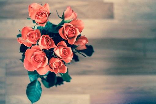San Valentino: foto e immagini per la festa degli innamorati