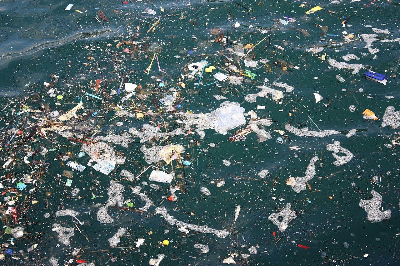 Inquinamento delle acque marine, le cause da quello organico a quello chimico