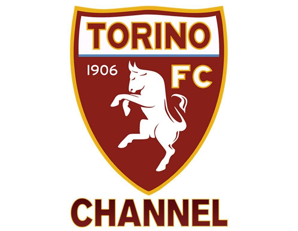 Quiz sul Torino: quante ne sai sulla squadra granata