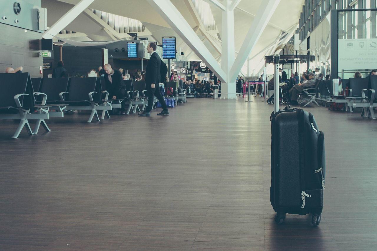 Cane muore su un volo United Airlines: è stato costretto a viaggiare nella cappelliera dell'aereo