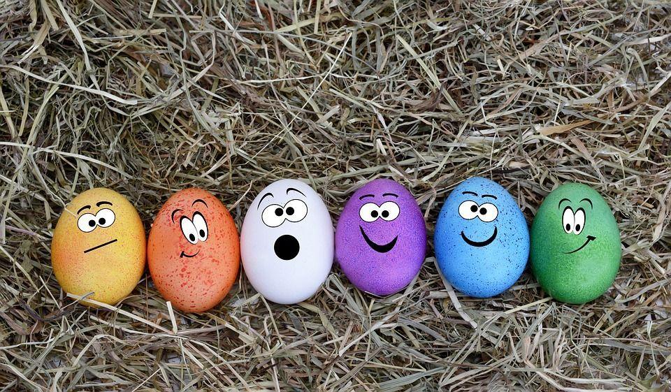 Immagini di Pasqua per fare gli auguri di Buona Pasqua più simpatici e divertenti
