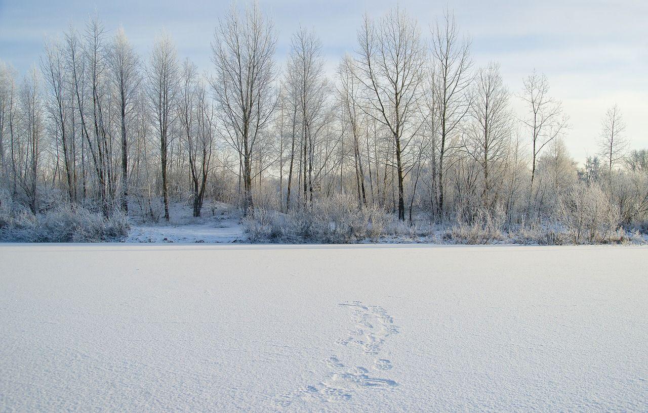 Bimbo sonnambulo va in strada a -20° e muore congelato: tragedia in Siberia