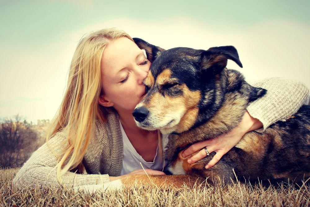 Perché adottare un cane è meglio che comprarlo