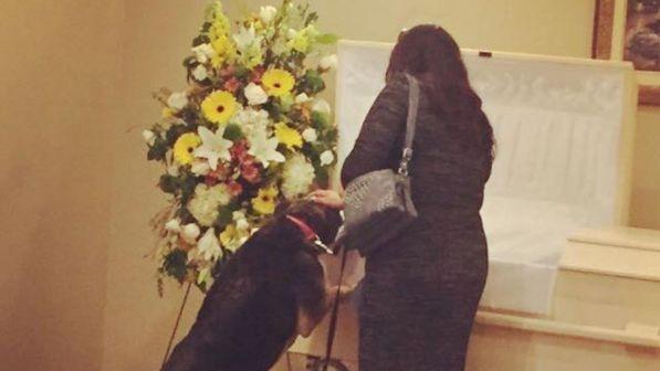 Cane assiste il funerale del suo padrone e trova pace