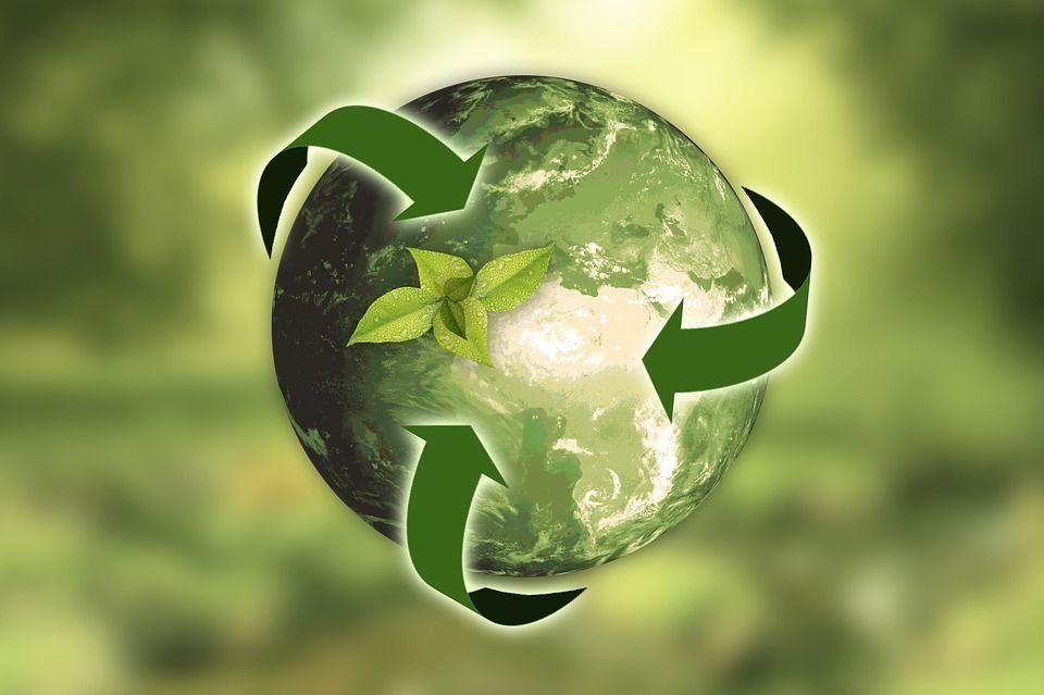 Olio usato riciclato: trend positivo che porta l'Italia vicino al 100%