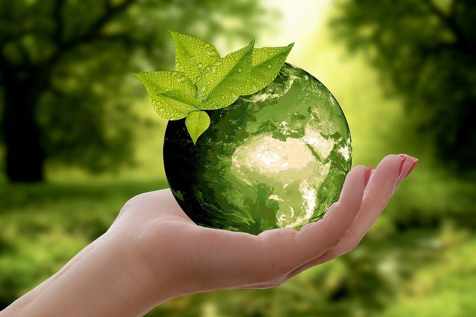 Inquinamento 5 invenzioni da conoscere per salvare il pianeta