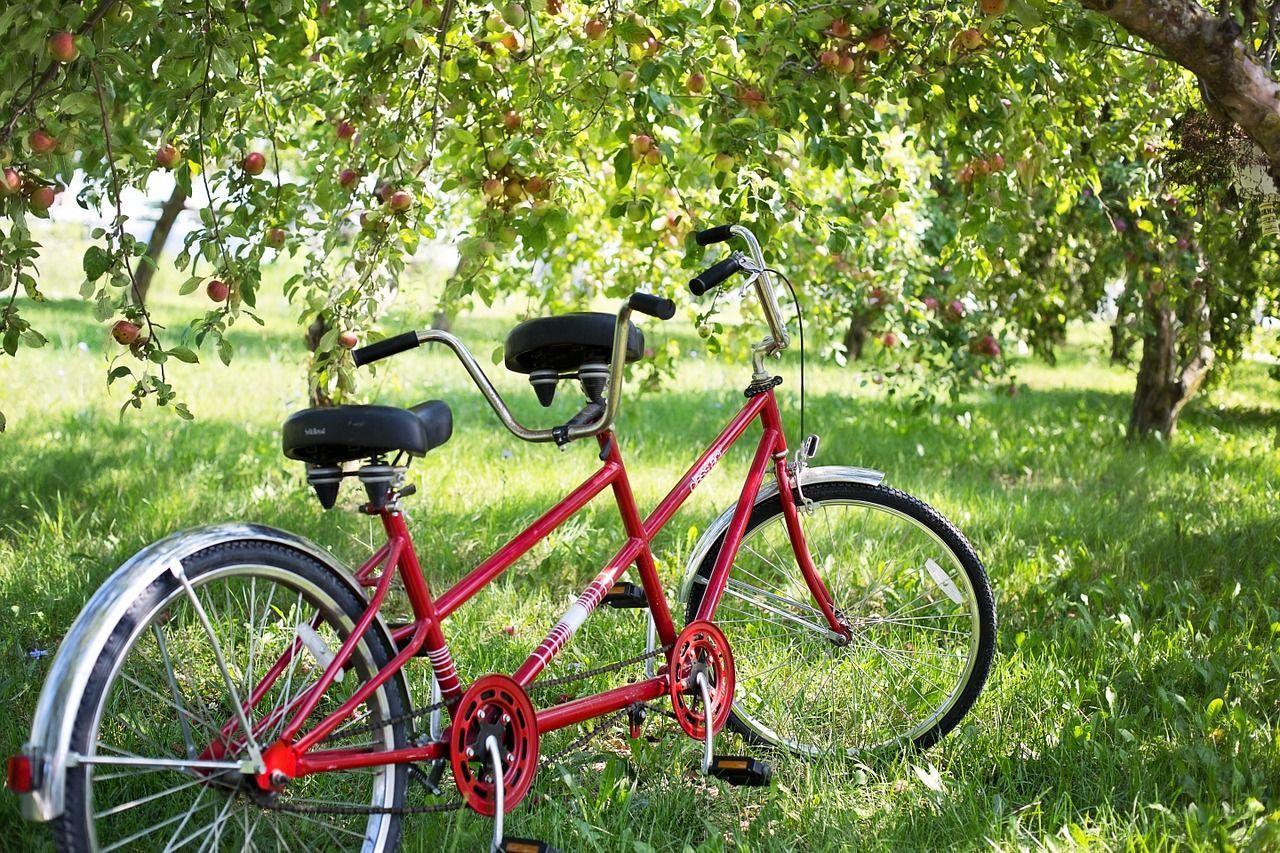 Rubano la bici a un bambino autistico, l'appello del padre: 'Per lui è sinonimo di libertà'