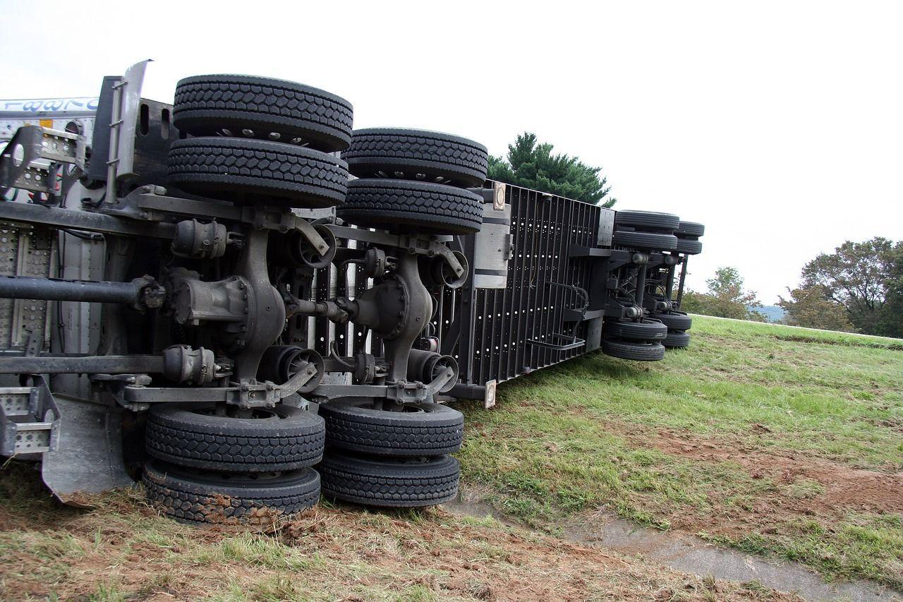 Strage di polli: il rimorchio del camion si capovolge e rimangono uccisi 2mila esemplari