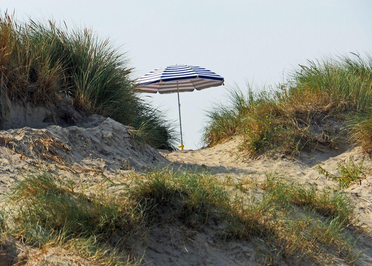 Belgio, niente spiaggia nudista a Westende 'il sesso minaccia le specie protette'