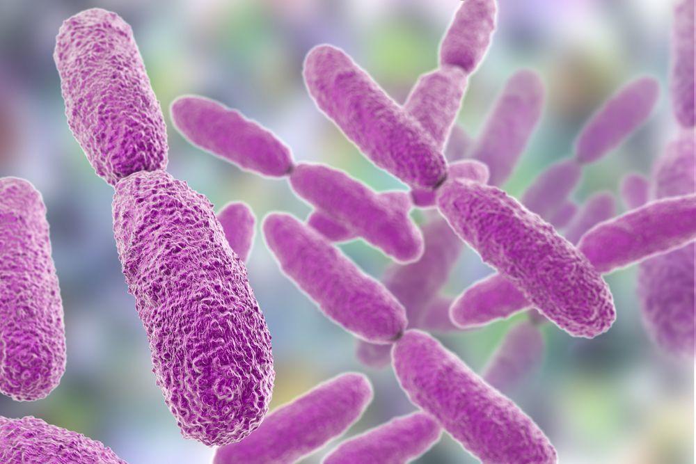 Turisti con batterio resistente agli antibiotici, stato di allerta nelle Canarie
