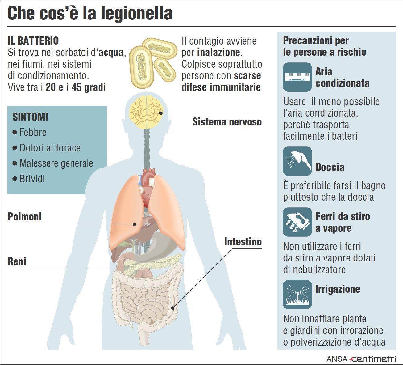 Legionella ecco come si trasmette