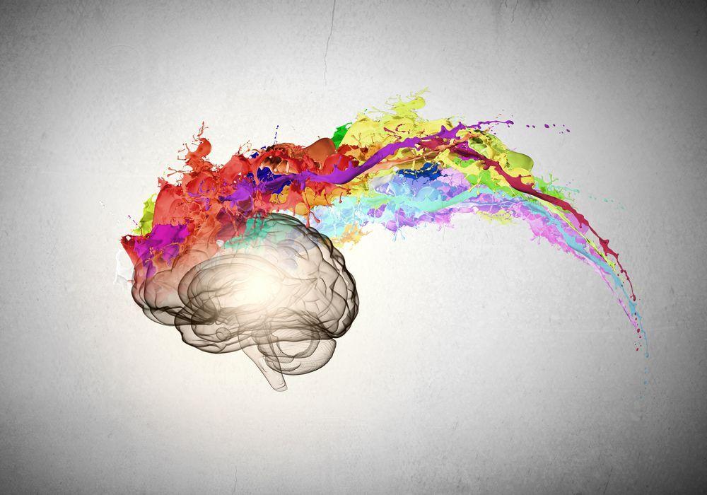 Il liceo classico e il mito (ingannevole) dell'elasticità mentale