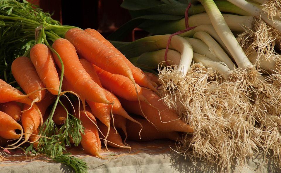 Coltivare cibo benessere
