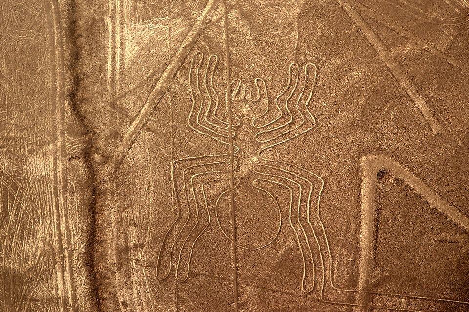 Best Peru Scratching Pictures Nazca Plateau Spider