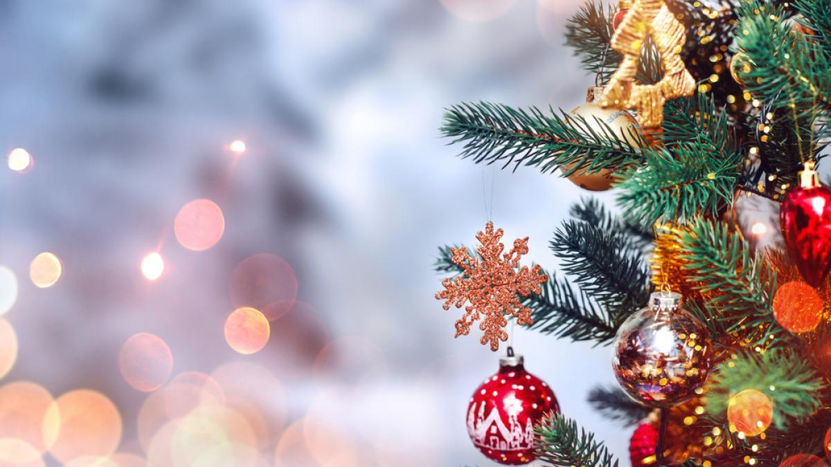 Poesie Di Natale Piumini.Poesia Di Natale Per Bambini Piccoli Dedicata Agli Alberi Nanopress