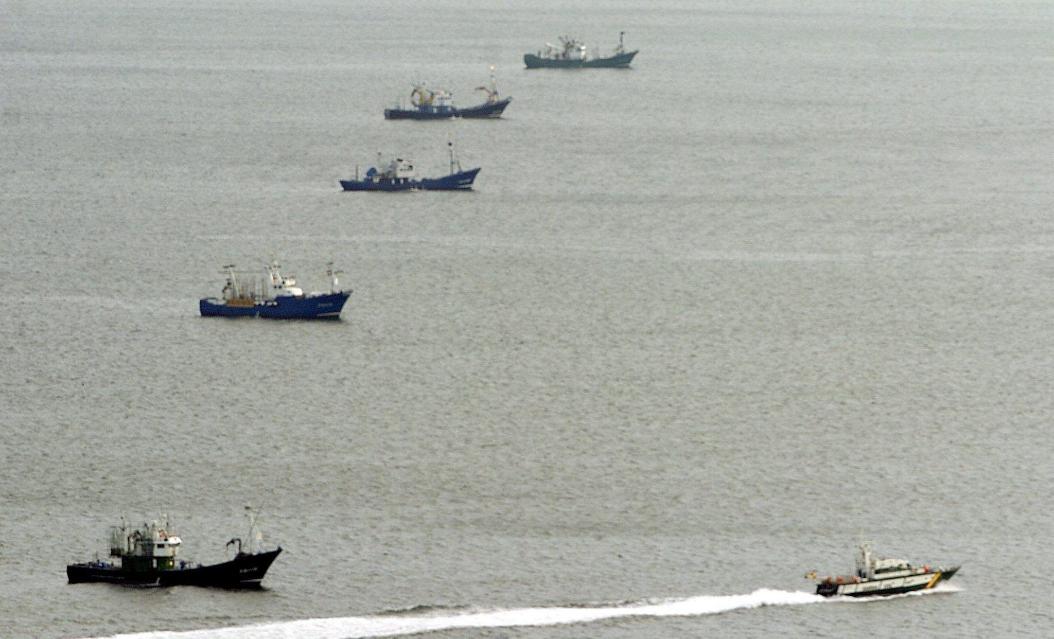 Filiera sostenibile nel settore ittico: dalla pesca ben gestita alla tracciabilità