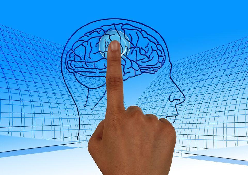 15 abitudini che fanno bene al cervello