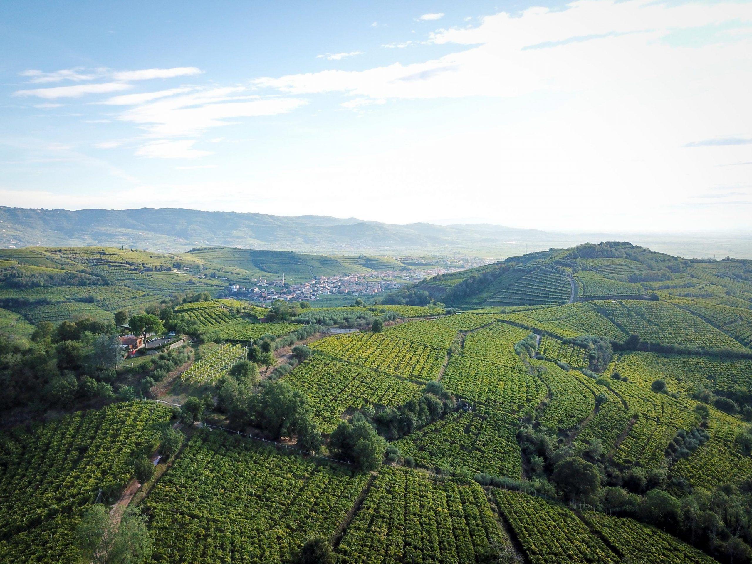 Agricoltura: la ricetta è investire in territorio, infrastrutture e innovazione