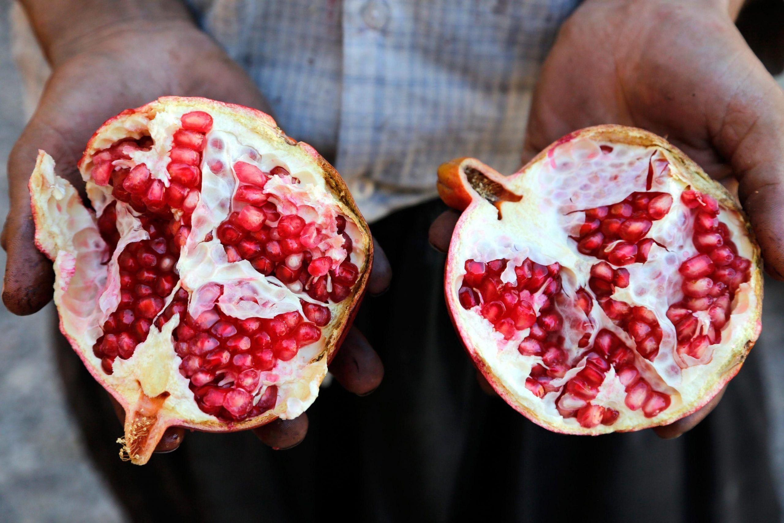 Contratto di sviluppo al sud: l'esempio della Masseria Fruttirossi