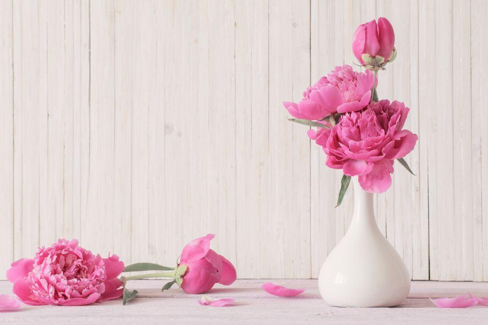 San Valentino, tre ragazzini comprano fiori per tutte le compagne di scuola