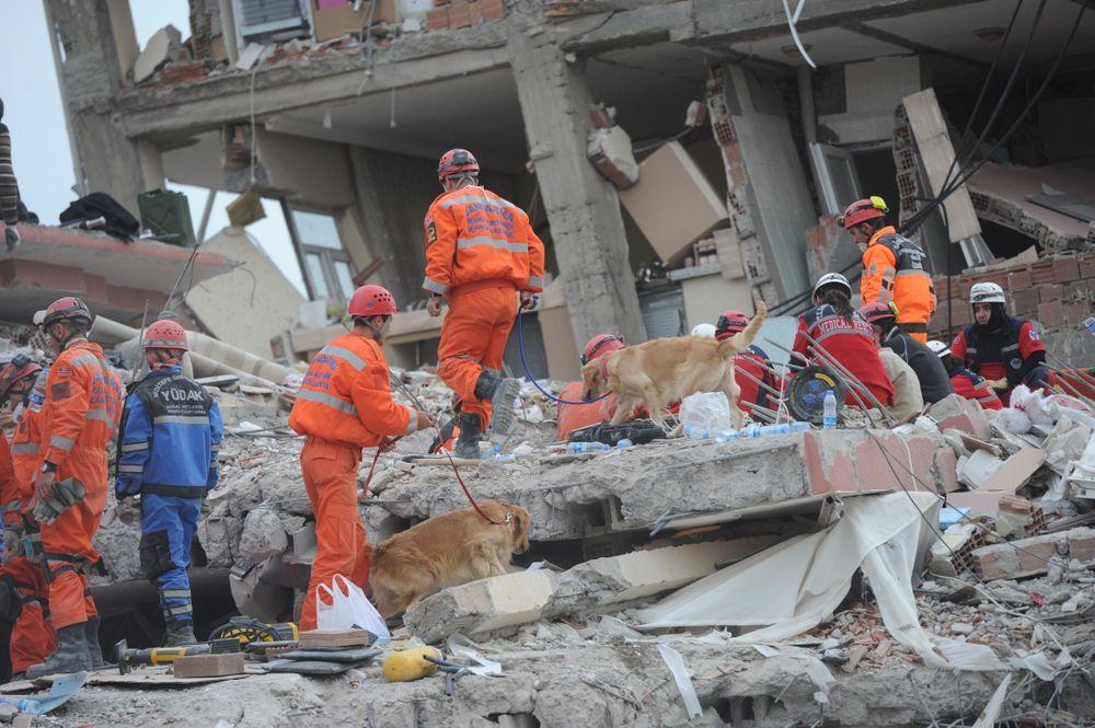 Terremoto in Albania di magnitudo 6.5, ci sono vittime e feriti