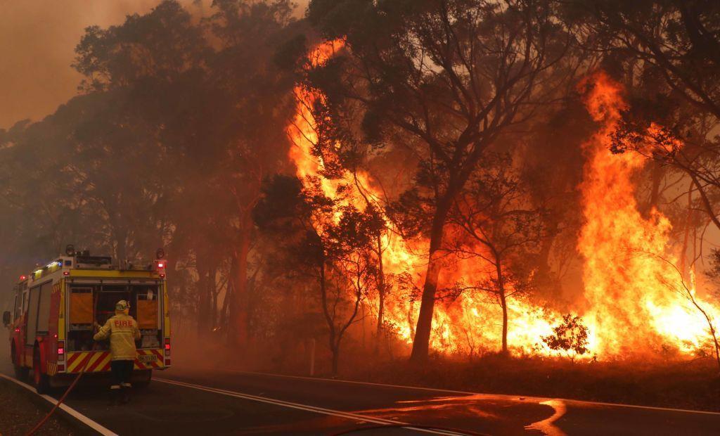 Incendi in Australia, un dramma ambientale