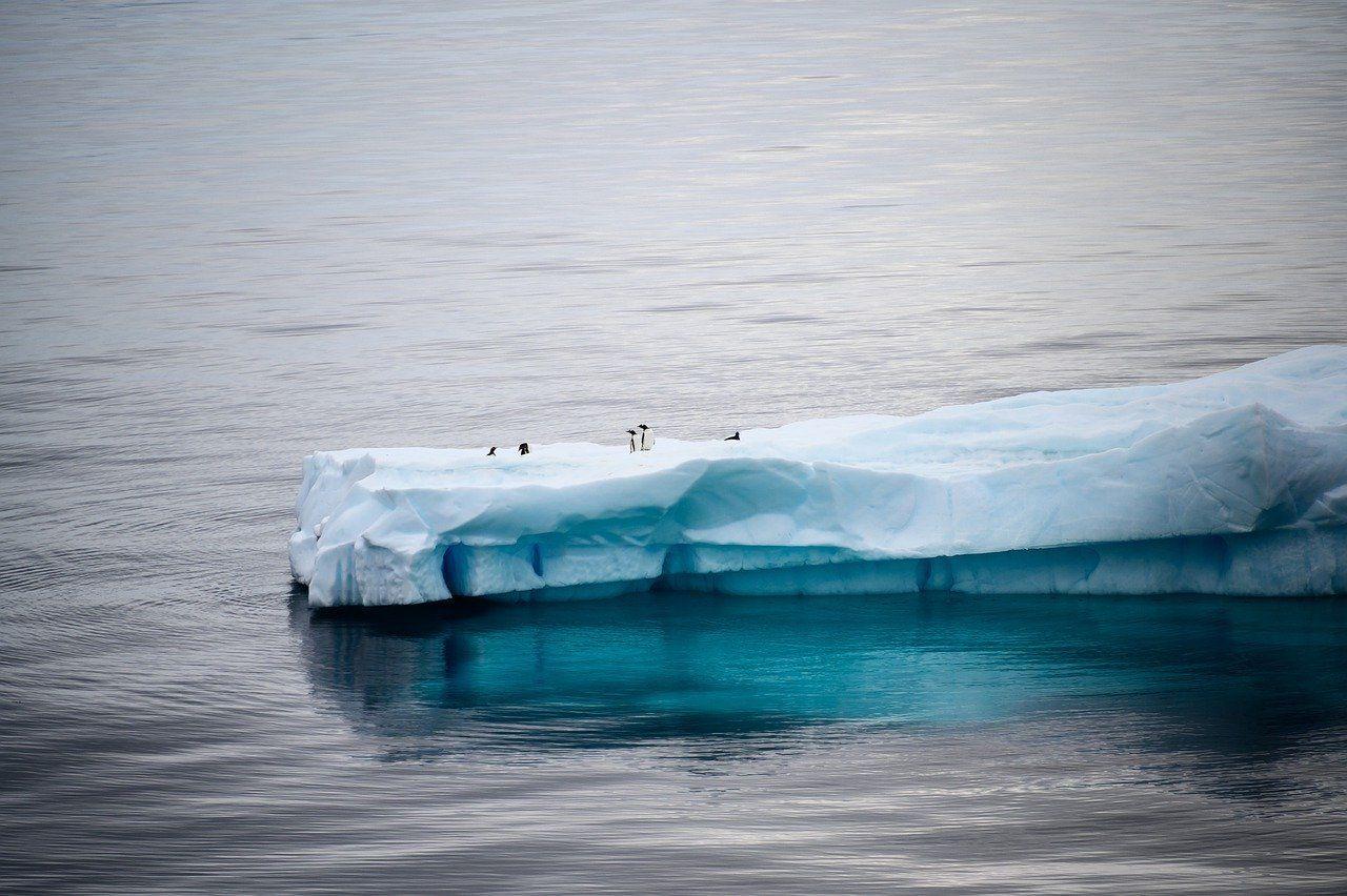 Ghiacci in Antartide
