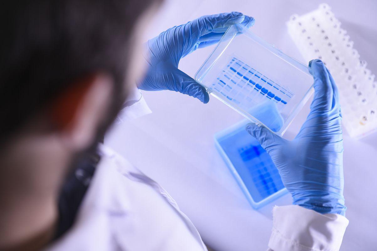 Coronavirus, l'Ue acquista nuove dosi di Remdesivir