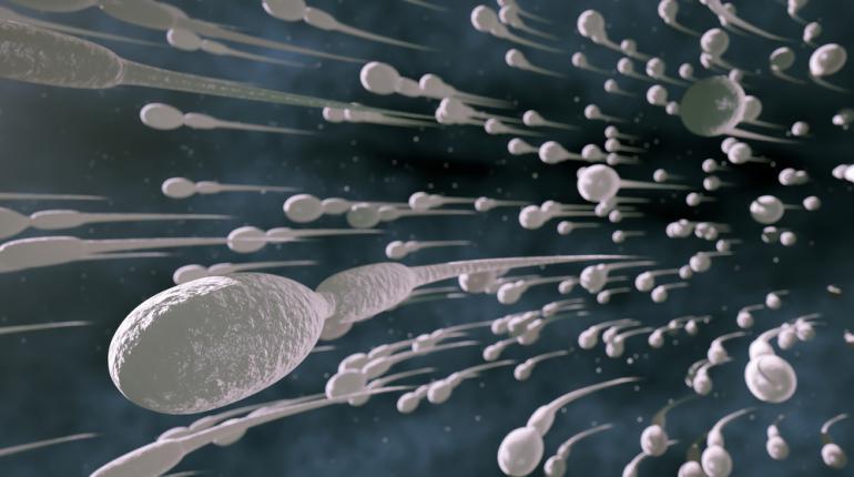 Spermatozoi-robot per combattere la sterilità