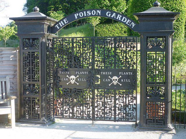 Alnwick Garden: il giardino più velenoso del mondo
